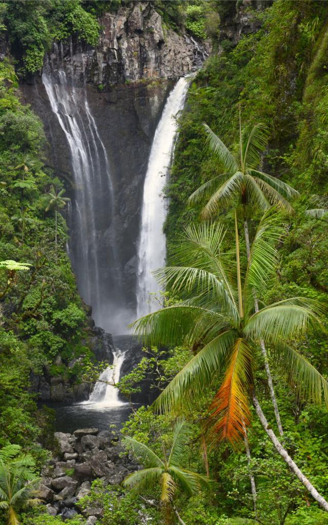 Bassin cascade Takamaka37
