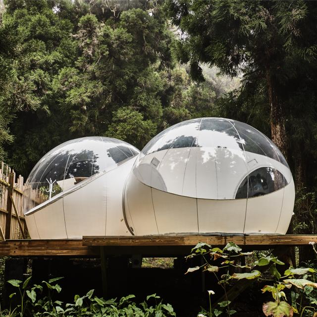 camping13_kaz_insolite_-_credit_irt-_droits_reserves_-_studio_lumiere_dts_09_2022.jpg