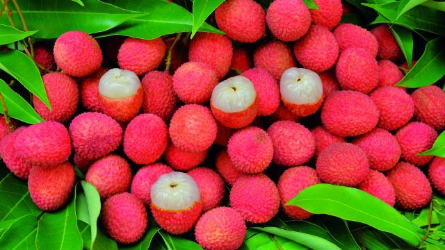 fruits33_letchis_-_credit_irt_-_serge_gelabert_dts_12_2018.jpg
