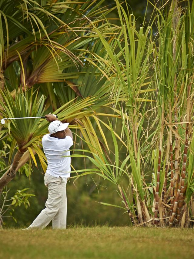 golf42_colorado_-_credit_irt_-_studio_lumiere_dts_09_2015.jpg