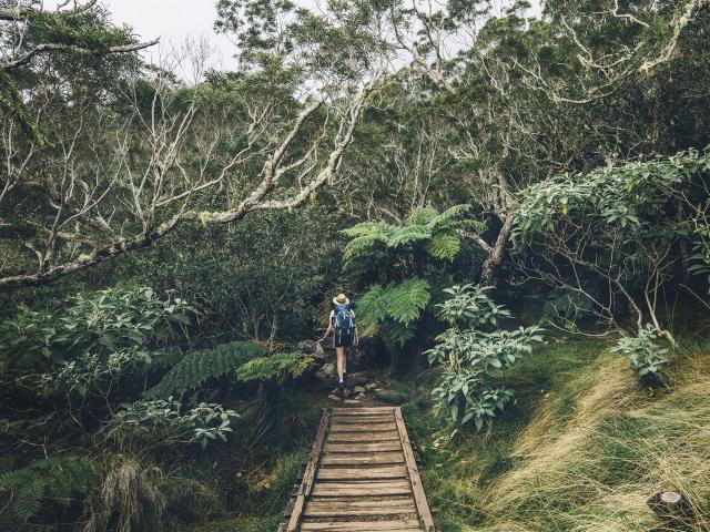 Randonnées à La Réunion
