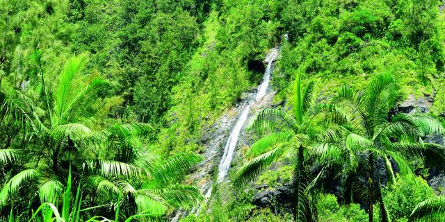 l'Est de La Réunion