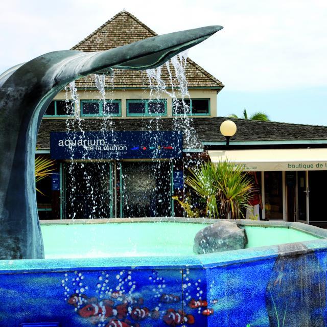 Aquarium de Saint-Gilles