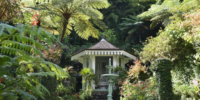 Les jardins botaniques La Réunion