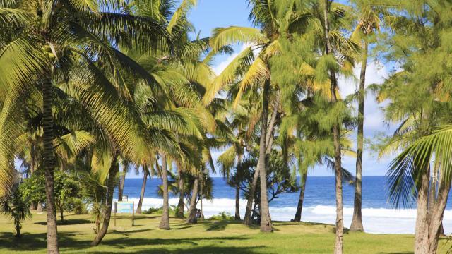 Plage de la Grande Anse, La Réunion