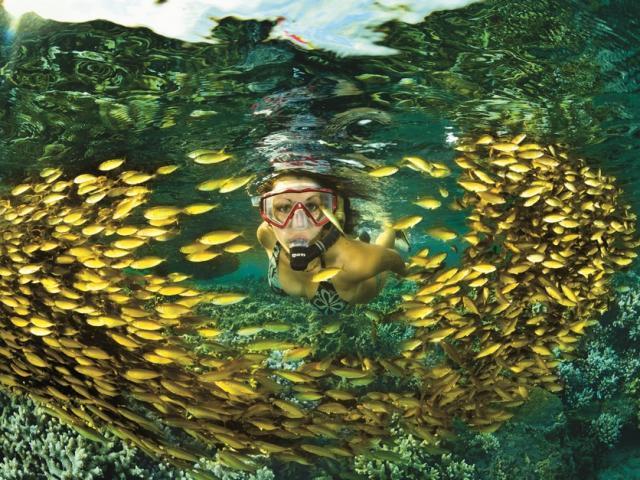 la mer à la réunion