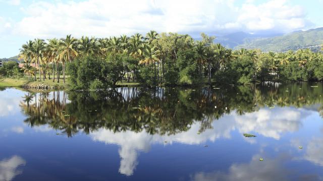 Étang de Saint-Paul, La Réunion
