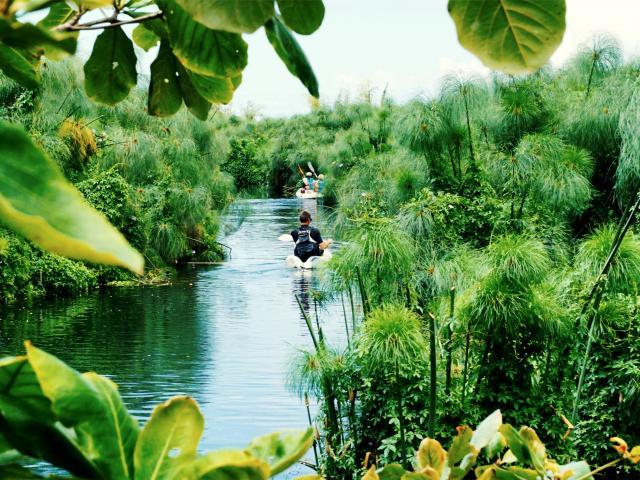 saint_paul85_kayak_etang_reserve_naturelle_-_credit_irt_-_stephane_michel_dts_07_2019.jpg