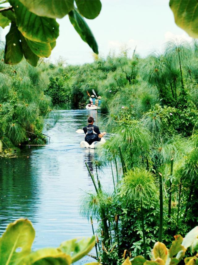 Etang Saint-Paul Kayak