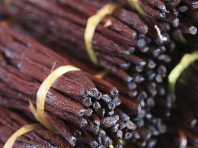 Vanille de La Réunion, Trapèze des Mascareignes