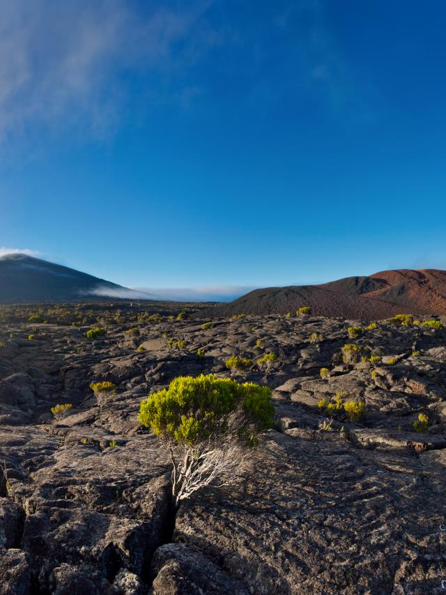volcan02brumeenclosfouquepitondelafournaise01-creditirt-frog974photographiesdts06dts2015.jpg
