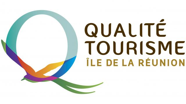 IRT_AO_REUNION_QUALITE_LOGO_071212_VECTO