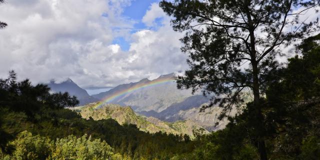Randonnées à La Réunion.jpg