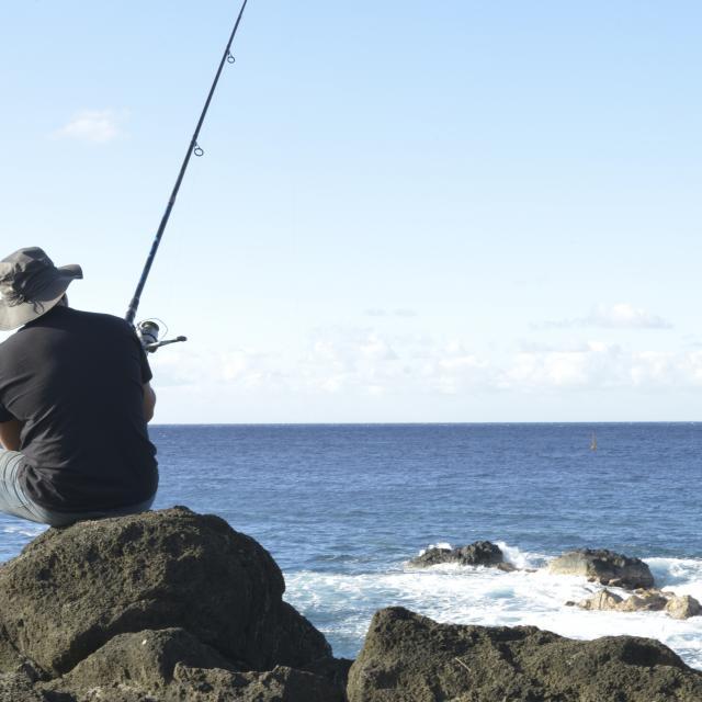 pêche à la réunion