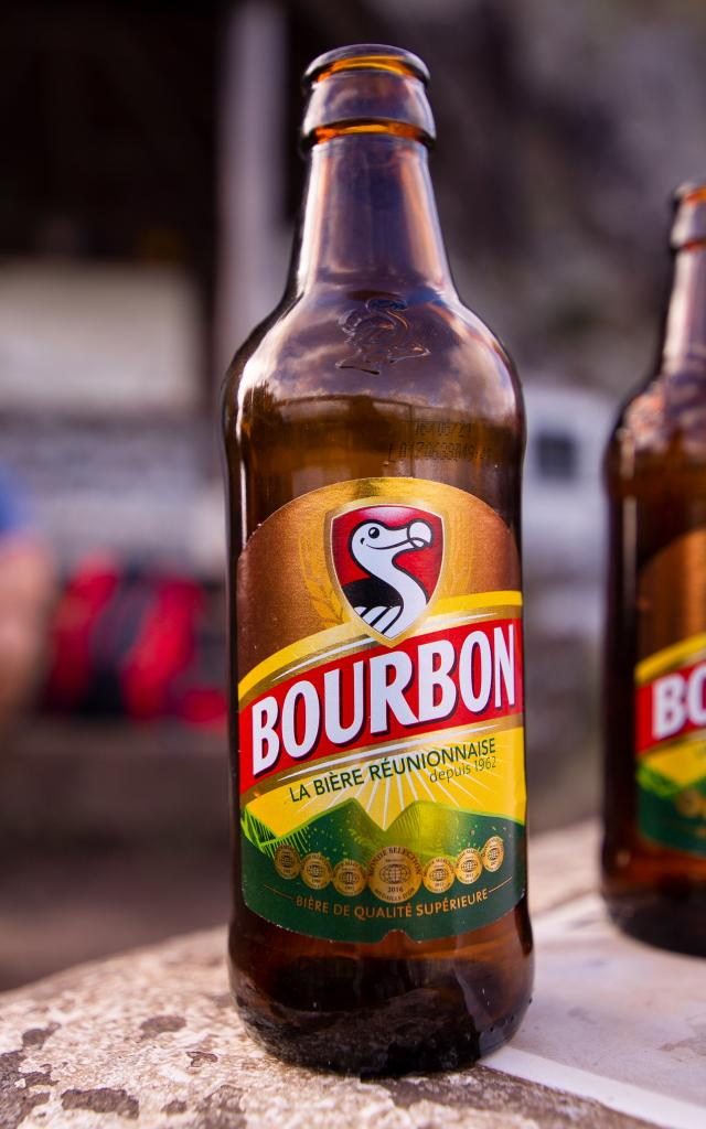 irt-dodo-bourbon-2brice-marquis-sbie-travelsgallery-fr-.jpg