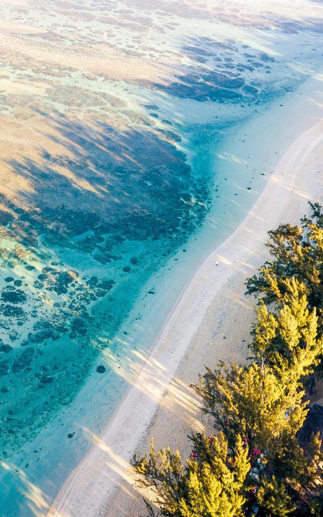 paysage-sable-arbre-et-mer-lux-1-credit-naime-vally-dts-web-illimites.jpg