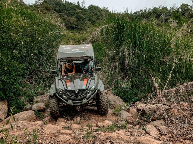 Buggy Canne Sud