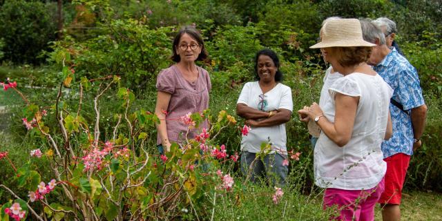 Bienvenue Domaine Beaubassin Visite Jardin Dt Irt@la Petite Creole