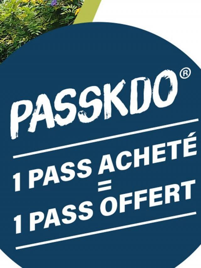 IRT pass k 200x266