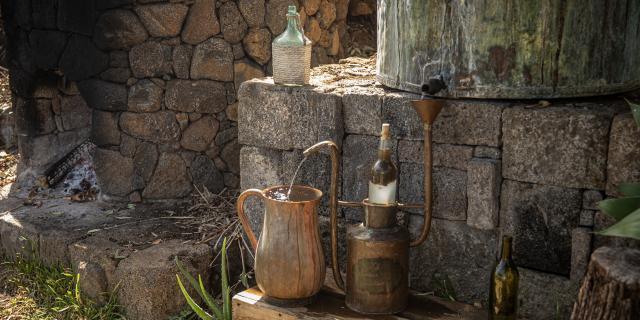 Du Jardin à L Alambic La Fontaine Aromatique Irt@travels Gallery Dt 2030 (11)