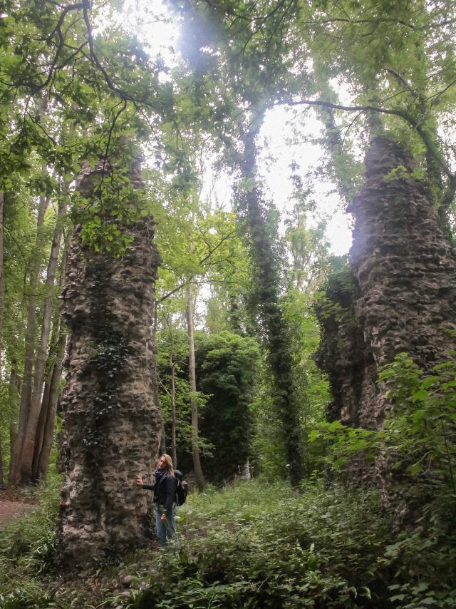 Bois De Bernouville Hautot Ens August Voyage 2