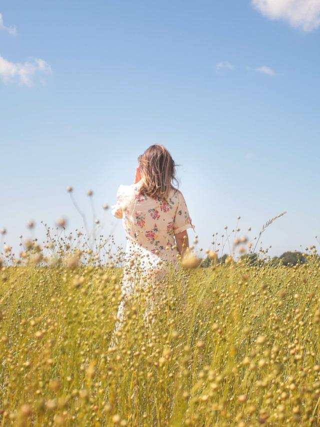 Jeune femme de dos dans un champ de lin en bourgeon