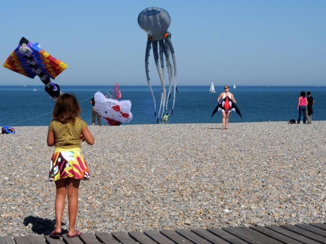Festival Cerfs Volants Dieppe Yann Pelcat 11