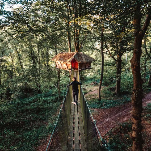 Jeune homme se rendant à une cabane suspendue dans un arbre d'une forêt.