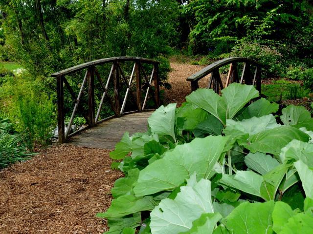 Petit pont en pierre surmontant un cours d'eau, végétation verdoyante