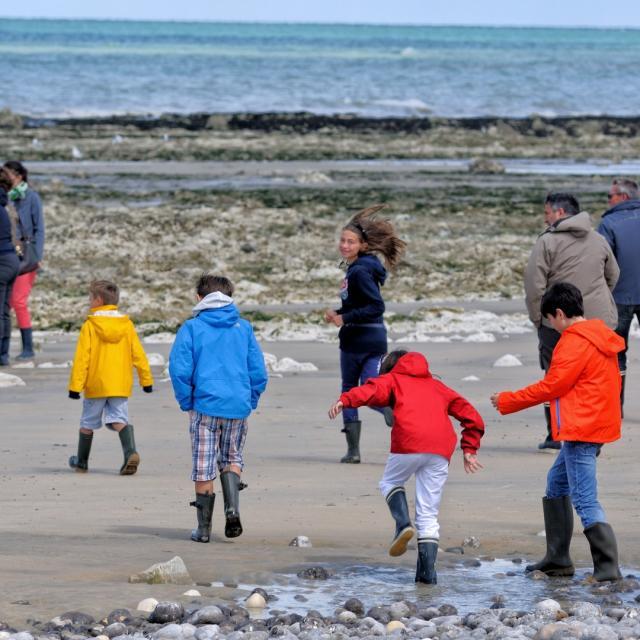Groupe de personne sur la plage et visitant le littoral