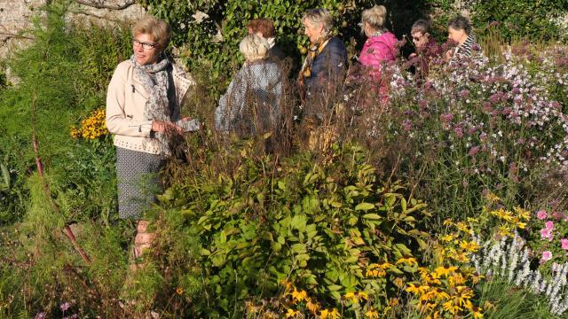 Groupe de personnes se baladant sur une travée entre un arbre fruitier et un mix border fleuri aux couleurs vertes, jaunes et roses