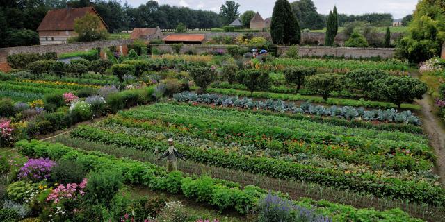 Vue d'en haut du jardin potager, rangée de légumes aux nuances vertes, mix border fleuris, épouvantail