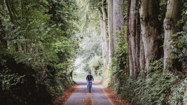Jeune homme à vélo dans une rue boisée de Varengeville-Sur-Mer