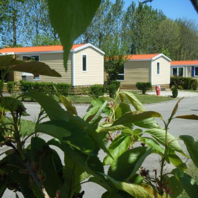 Camping Vitamin Dieppe Saint Aubin Sur Scie
