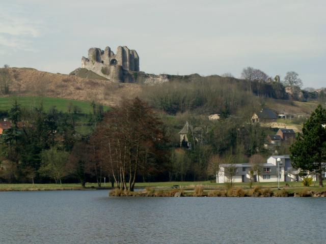 Vue sur le Château d'Arques depuis un étang où nage un cygne