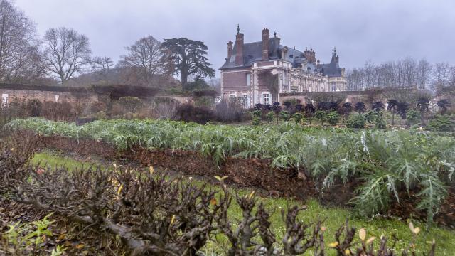 Potager dans une ambiance hivernale et brumeuse, arbres et plantations sans feuille, château à l'arrière-plan