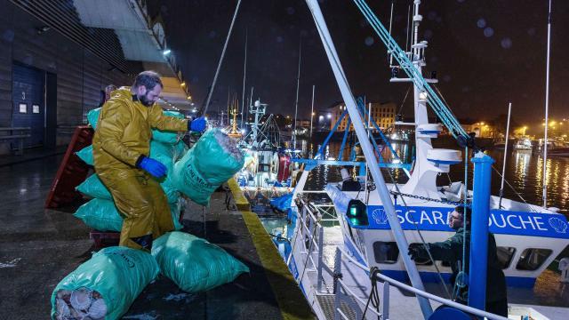 Marins déchargeant des sacs de coquilles Saint-Jacques d'un bateau amarré au port, de nuit