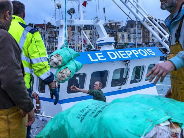 Peche Ouverture Coquille Dieppe Giada Connestari 41