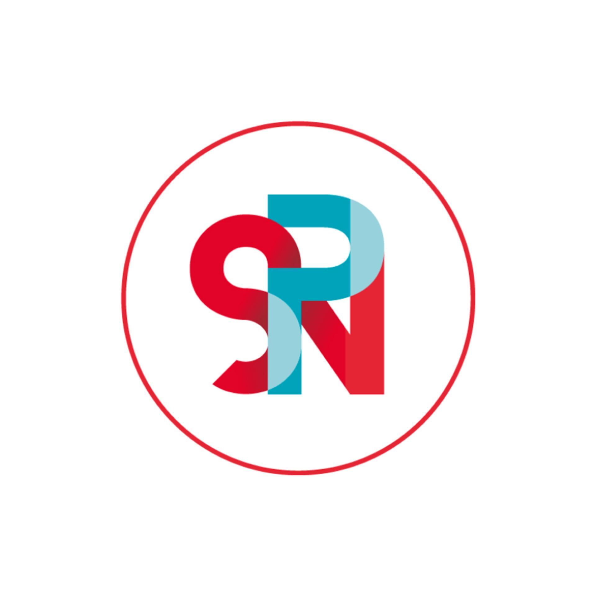 Logo Le Réseau Des Professionnels Du Numérique Spn