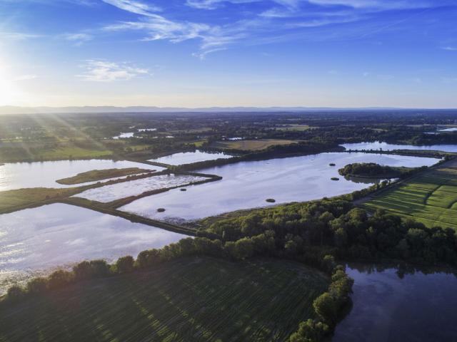 Les étangs de la Dombes