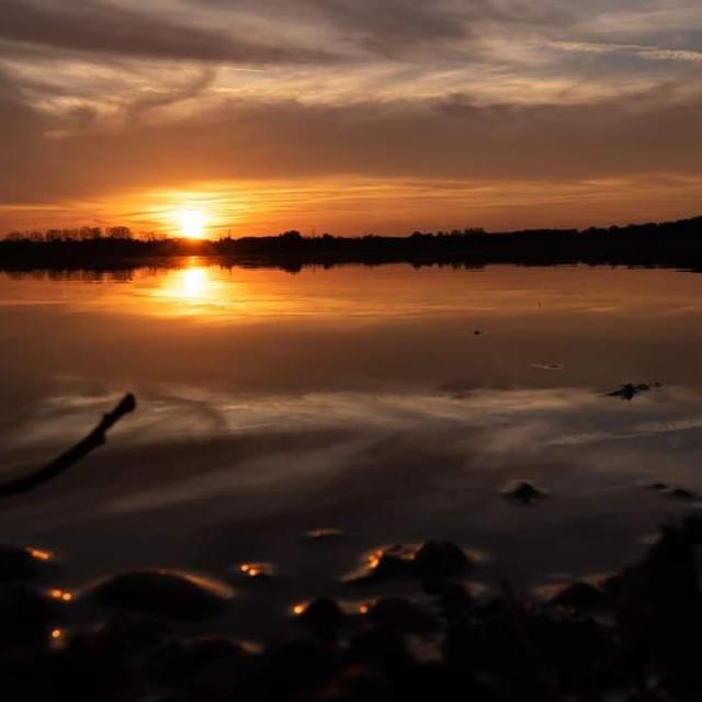 Crépuscule sur un étang de la Dombes