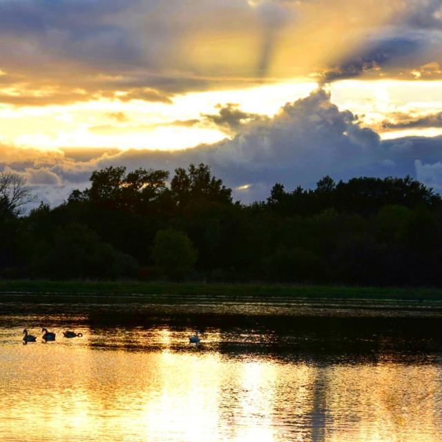 Coucher de soleil sur les étangs de la Dombes