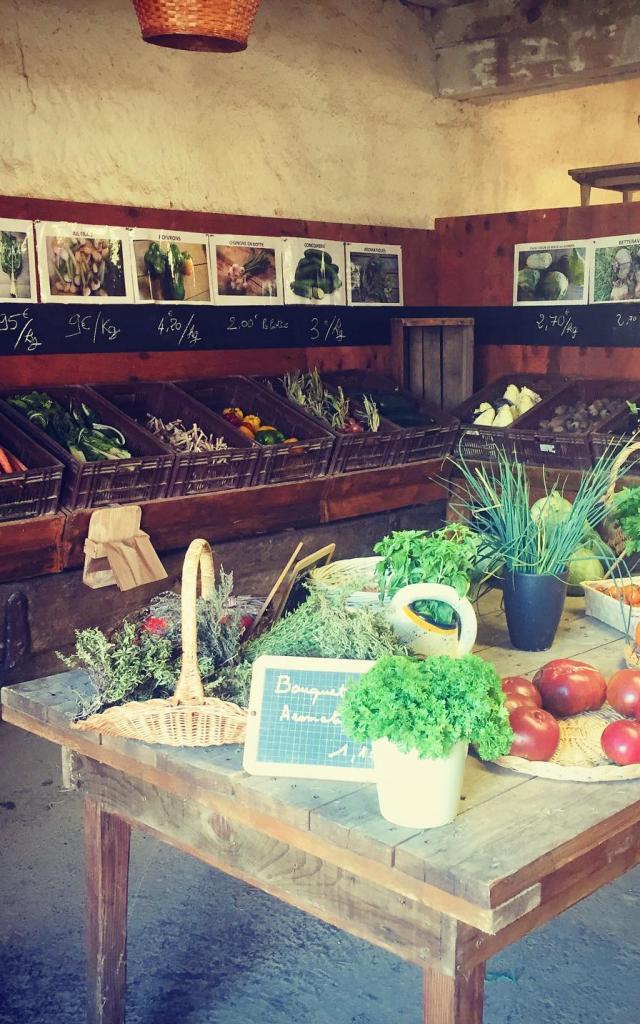 Boutique du Jardin Bio de la Dombes à Villars les Dombes