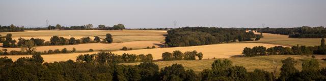 Paysages de Dombes