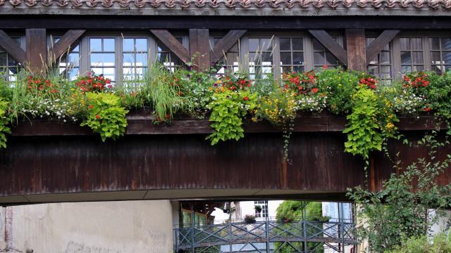 Pont fleuri sur la Chalaronne Châtillon-sur-Chalaronne