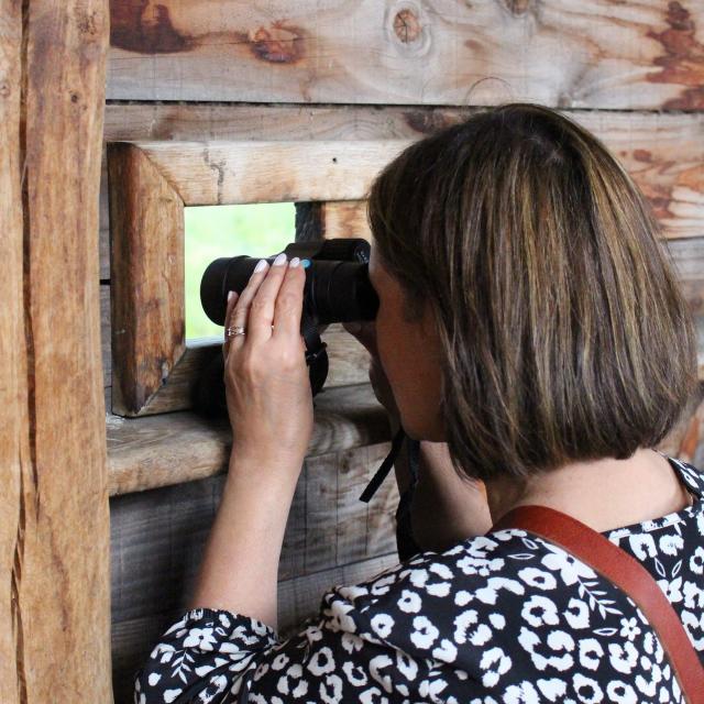 Observation à l'Etang Prele