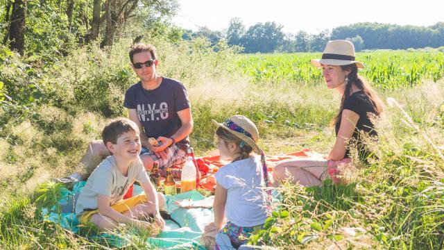 Pique nique au bord des étangs de la Dombes