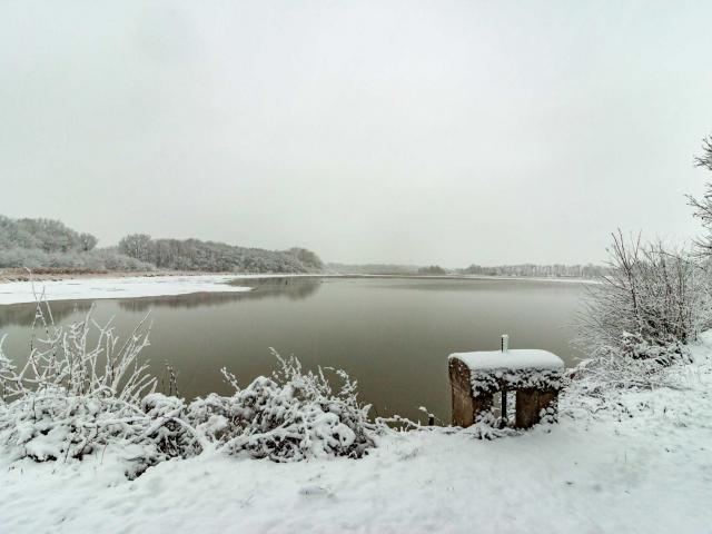 La Dombes sous la neige