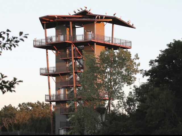La Tour Panoramique du Parc des Oiseaux