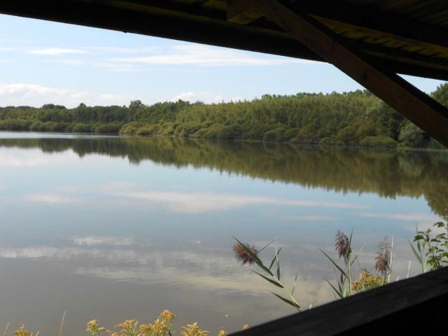 Vue sur l'étang de Vernange depuis l'observatoire